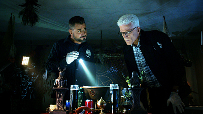 CSI: Crime Scene Investigation - The Book of Shadows