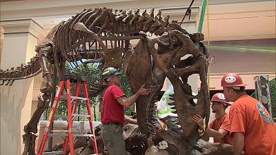 CBS This Morning - Inside the revamped Smithsonian dino exhibit