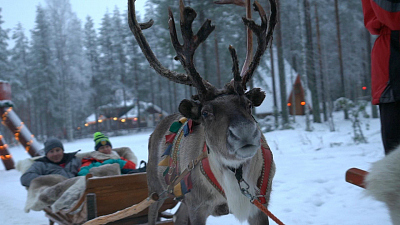 CBS This Morning - Climate change threatens reindeer population